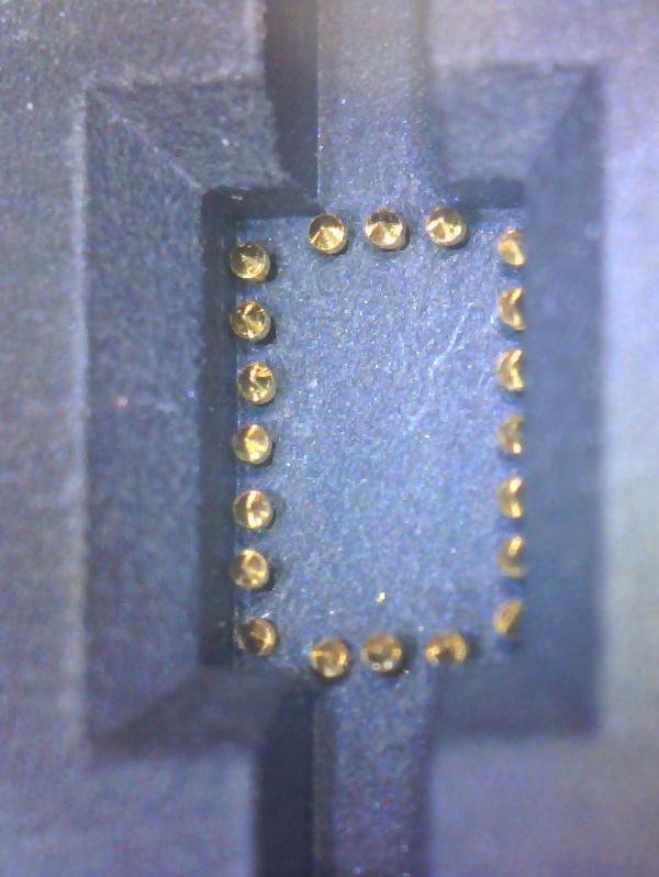 microscope-silego-test-socket